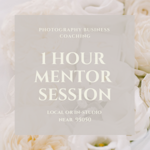 1 HOUR MENTOR SESSION (local)